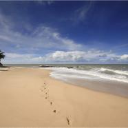 Ecoturismo y playa en Brasil